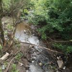 Экологические принципы организации территории крупного города