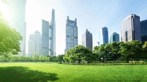 Зелёный город - не значит справедливый