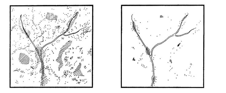 Чем коммерческий лес отличается от малонарушенного?