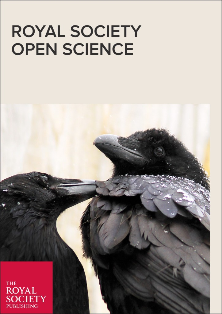 Исследование, как социальная сеть предсказывает направленность внимания и распространение информации в группе воронов