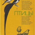 Как птицы обучаются  инстинктивному  поведению
