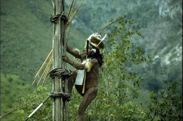Деревенский военный вождь в Baliem Valley