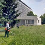 Природоохранный анализ Правил содержания зелёных насаждений