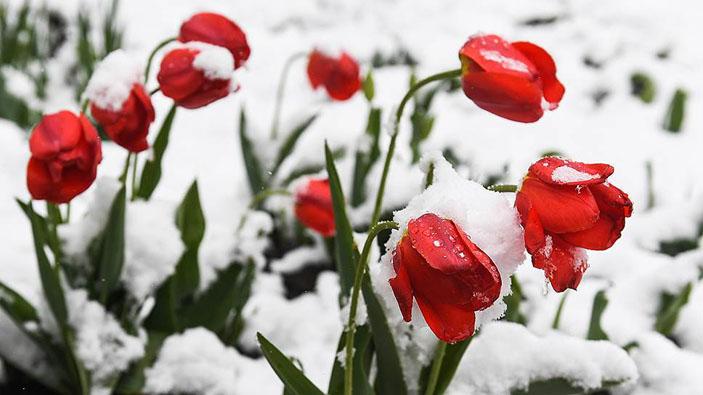 Атмосферное блокирование вызвало мощный заток арктического воздуха и снежные эпизоды.