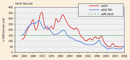 4. Динамика вылова/численности взрослых особей североморской трески.