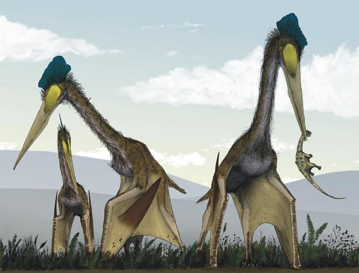Группа кетцалькоатлей (Quetzalcoatlus northropi) охотится на детенышей титанозавров в доисторических пампасах Южной Америки. Рисунок из статьи M. P. Witton, D. Naish, 2008. A reappraisal of Azhdarchid pterosaur functional morphology and paleoecology