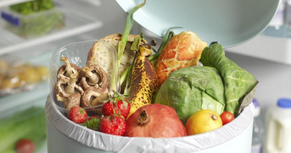 food-waste stop=