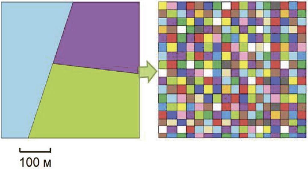 Рис. 5. Примерная схема формирования гетерогенной разновозрастной и разновидовой мозаики хвойно-широколиственного леса на водоразделе (по [59]). В левой части рисунка – исходное состояние лесного массива, представленного одновозрастными монодоминантными насаждениями, сформировавшимися после сплошных рубок и создания лесных культур (например, березняки, осинники, сосняки, ельники). В правой части рисунка – ожидаемый результат восстановления разновозрастной и разновидовой мозаики хвойно-широколиственного леса. Разными цветами показаны насаждения с доминированием разных видов и разного возраста. Необязательно, что элементы мозаики должны быть квадратной формы и одинакового размера