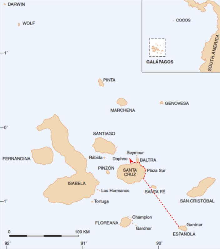 Рис. 2.Предполагаемый маршрут «отца-основателя», прибывшего с Эспаньолы на Дафне в 1981 году. Рисунок из обсуждаемой статьи в Science