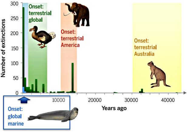 Рисунок 1. Сравнительный хронологический анализ вымерших по вине человека наземных и морских животных. Зеленые полосы соответствуют наземным животным, синие — морским. Рисунок из[2].
