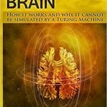 Мозг: новая метафора или почему нейроны – не главное