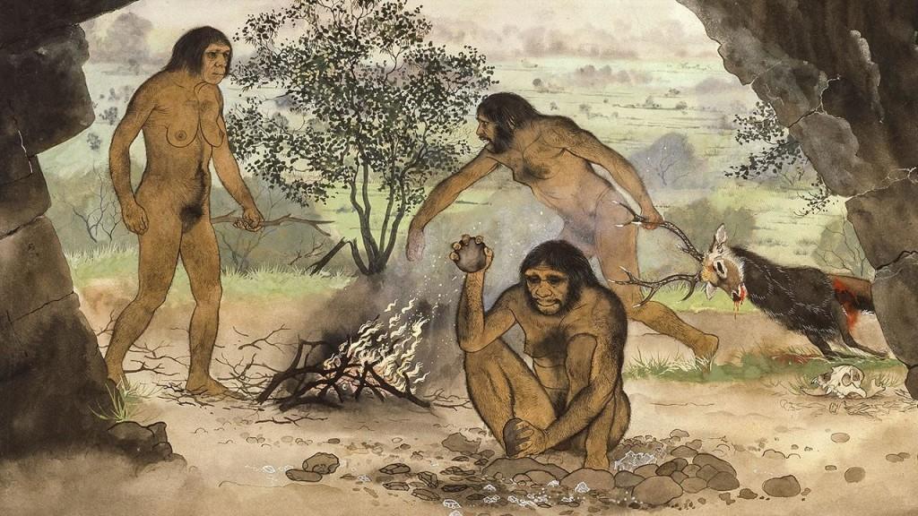 """Каменные """"кухонные ножи"""" могли подтолкнуть людей к поеданию мяса или кореньев ещё до распространения термической обработки"""