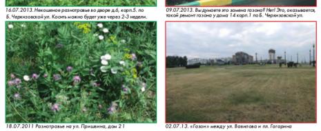 Стерилизующий уход за зелеными насаждениями особенно поражает своим неуместным анахронизмом на фоне реабилитации дикорастущей растительности в городах Западной Европы, внедрения там новых, экономичных и экологически адекватных форм озеленения. Кстати сказать, разнотравные, пестреющие дикими цветами, похожие///