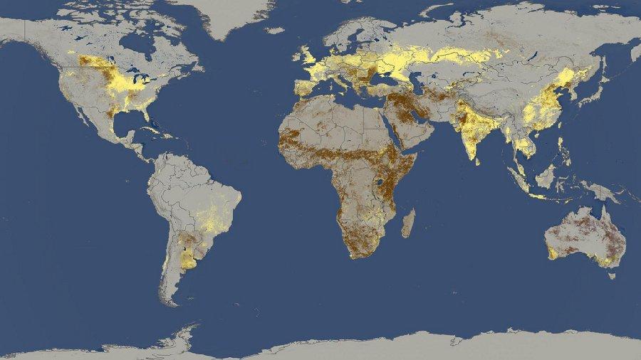 Жёлтым зарисованы страны, на которые приходится 82% сбора зерновых в мире
