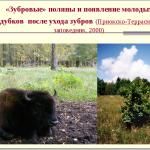 Экологический риск заповедания и пути его преодоления: обзор современных представлений