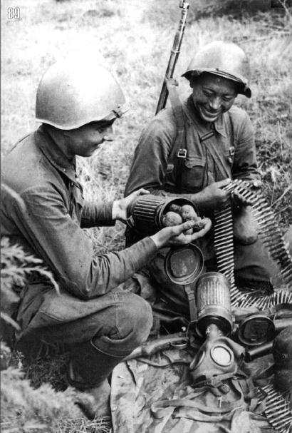 Картошка освобождена из немецкого плена. Брянский фронт, сентябрь.