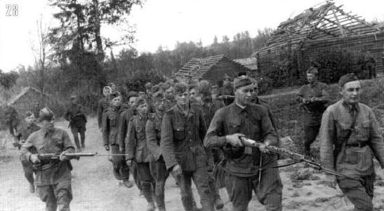 Колонна немецких пленных, захваченных 149-й пехотной дивизией в боях за деревню Захарово. 23 июля.