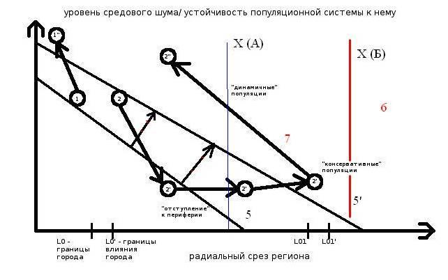 """Рисунок 1. Прямая (1) и возвратная (2→2'→2"""") урбанизации видов региональной авифауны (схема). Обозначения. Ось Х – радиальный срез региона: L0/0' – граница города  в последовательные моменты урбанизации (5 и 5', стрелки с красной полоской), L01/01' – то же, его зоны влияния в регионе,  2'  – период «отступления» вида на периферию региона под «прессом» трансформации ландшафта, вызванной урбанизацией территории, 2"""" – «поворот», вызванный лабилизацией жизненной стратегии вида (и типов отношений внутри популяции) после L лет «отступления». 4 — устойчивость и/или численность популяции редкого вида по завершению возвратной урбанизации. 5 и 5' — градиент региональной урбанизации в последовательные моменты времени, за которое её степень вырастет, а уязвимый вид – отступит к периферии.  Этот «городской градиент» формирует закономерные изменения «архипелага» местообитаний и, соответственно, степени средового стресса (environmental stress) для особей на «островах» и неустойчивости — для метапопуляции вида. 6 — малонарушенная периферия региона, где существование вида устойчиво. 7. Момент превращения «консервативной» популяции в «динамичную», отличающуюся «проточной» структурой группировок и другими особенностями социальной и популяционной организации (Фридман, Еремкин, 2009, табл. 3). Х – оптимальный уровень средового стресса (ее проекция на ось Х – «точка старта» возвратной урбанизации) для обычных (А) и исчезающих (Б) видов. Примечание. Жизнеспособность популяций 1', 2', 2"""" требует устойчивости их пространственно-этологической структуры большей, чем уровень средового стресса (оба параметра отложены по одной ос У)."""