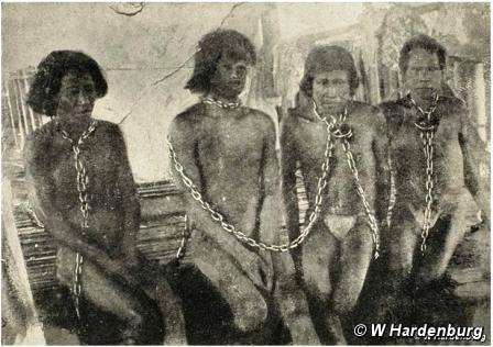 Тысячи индейцев были порабощены и убиты во время бума каучука. © W Hardenburg