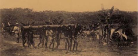 На примере истории массовых убийств, пыток и рабства индейцев витото, организованных в 1909-1911 гг. в Путумайо не государством, а служащими частной компании, и нынешним положением этой территории, где частная инициатива проявляется сходным образом, показывается, что капитализм никогда не основывался на свободном труде. В т.ч. потому, что людей...