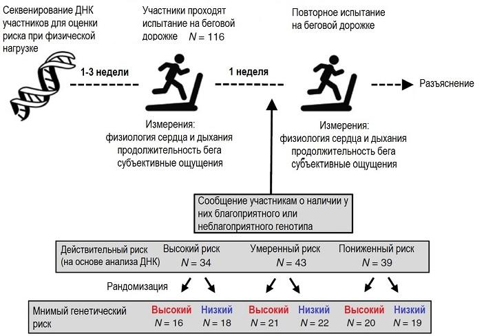 Рис. 2. Схема первого эксперимента. Пояснения в тексте. Рисунок из обсуждаемой статьи в Nature Human Behaviour