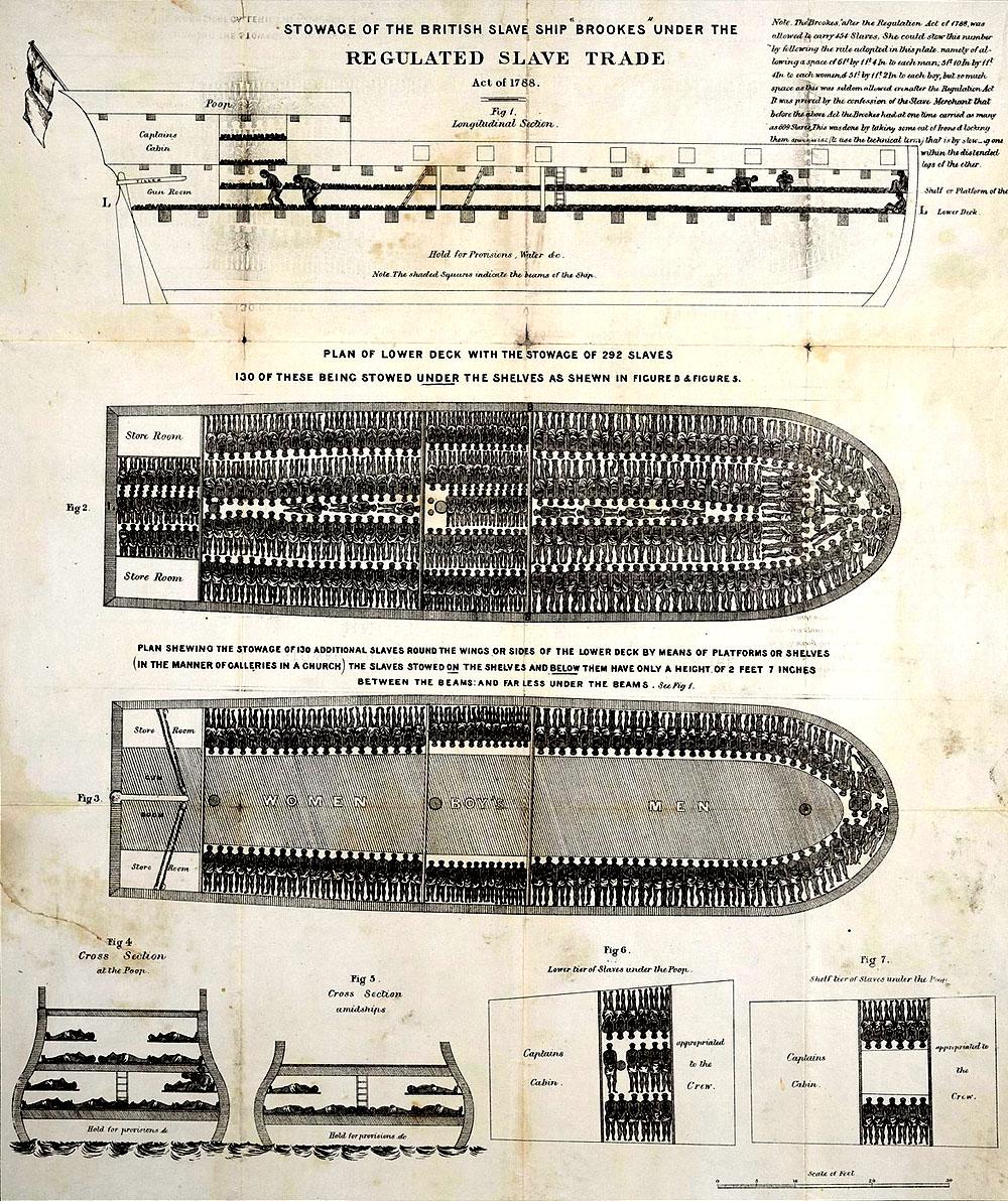 """Схема размещения живого товара на английском работорговом корабле """"Брукис"""". Неудивительно, что при такой компоновке за время рейса через Атлантику умирало в среднем от 10 до 20% """"пассажиров"""". Источник picturehistory"""