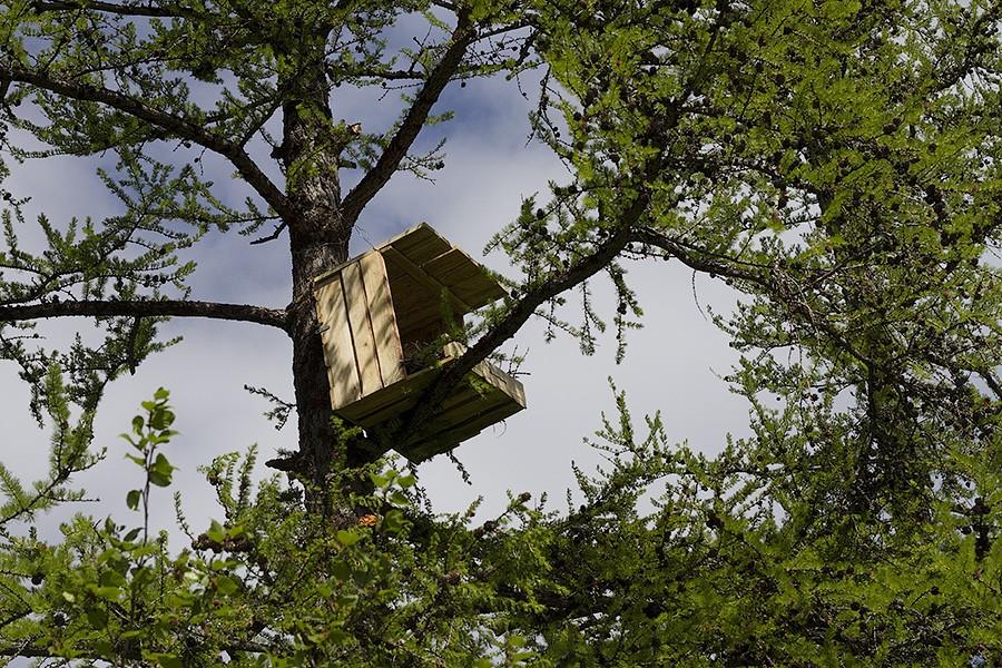 Готовый гнездовой ящик. Источник p-mechnikova