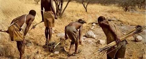 Недавно было показано, что охотники-собиратели живут не в своей малой группе, а в более чем протяжённом сообществе, социальной сети, связывающей много подобных групп на ...