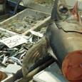 """Две истории, как глобальный капитализм уже подорвал рыбные запасы Океана, добывая заведомо больше устойчивого уровня и облавливая такие площади, что рыба не успевает восстановиться. Что происходит вопреки хорошо известному уровню вылова, при котором попуяции промысловых видов не только устойчивы, но и растут численно, хотя, соблюдая квоты в каждый отдельный момент, """"на длинной дистанции"""" рыбопромышленник возьмёт много больше. Но нет, каждый из них максимиирует выигрыш в каждом отдельном рейсе, подрывая базу для собственных бизнесов. Что есть одна из сторон общей иррациональности капитализма..."""