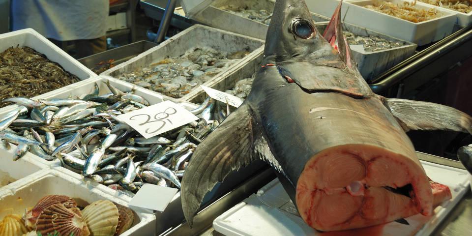 Здесь и далее - фото с итальянских  рыбных рынков