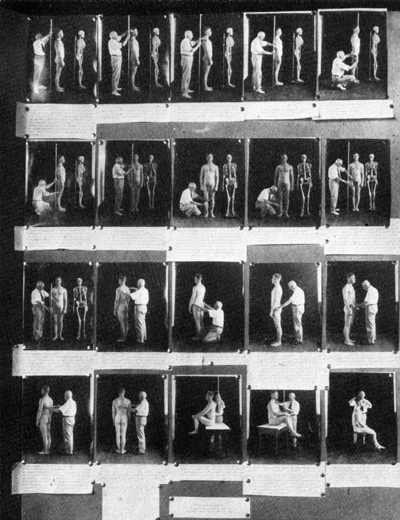 Демонстрация антропометрии в рамках выставки по евгенике, 1921-й год, США. Здесь и далее источник diletant.media