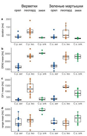Сравнение тревожных сигналов самок верветок и зеленых мартышек по некоторым количественным характеристикам. У самцов картина в целом такая же, но чуть более размытая. a — продолжительность в миллисекундах, b, c — характеристики частотного спектра («центральная частота» и «доминирующая частота»), показывающие, что в сигнале воздушной тревоги больше низких нот по сравнению с сигналами «леопард» и «змея», d — диапазон частот (разница между самой высокой и самой низкой частотой). Рисунок из дополнительных материалов к обсуждаемой статье в Nature Ecology & Evolution. Источник
