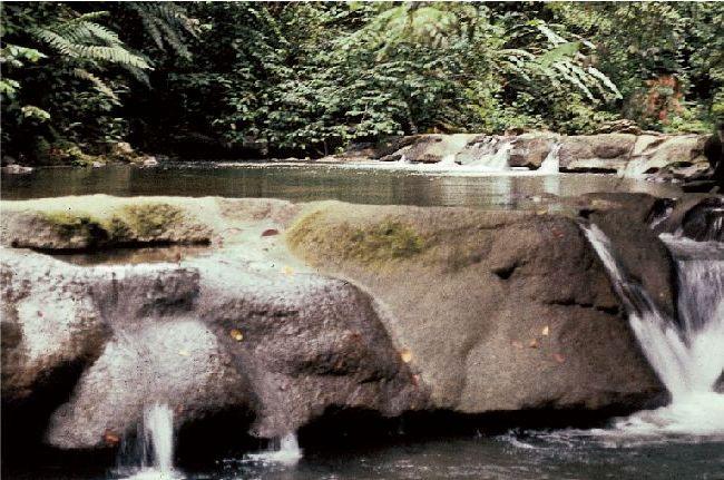 Горный ручей на Тринидаде