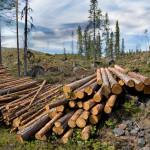 Исчерпание ресурсов и истощение почв