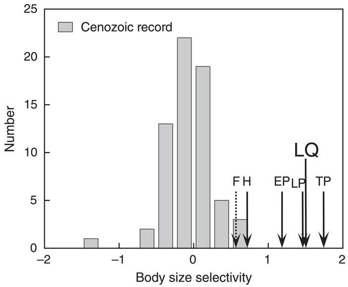 Рис. 1. Зависимость вероятности вымирания млекопитающих от массы тела в разные эпохи кайнозоя. Значения на горизонтальной оси показывают направленность и величину изменения вероятности вымирания вида с ростом массы тела (средний прирост натурального логарифма вероятности вымирания с увеличением массы тела в 10 раз). Положительные значения соответствуют преимущественному вымиранию крупных животных, отрицательные — мелких. Высота столбиков отражает количество интервалов кайнозойской эры (длительностью по 1 млн лет каждый), когда наблюдался данный уровень избирательности. Стрелками показаны уровни, характерные для позднечетвертичного времени: LP — Late Pleistocene (125–70 тысяч лет назад), EP — End Pleistocene (70–20 тысяч лет назад), TP — Terminal Pleistocene (20–10 тысяч лет назад), H — Holocene (10–0 тысяч лет назад), LQ — Late Quaternary, среднее значение за всю позднечетвертичную эпоху (125–0 тысяч лет назад); F — Future, прогноз на ближайшие 200 лет (основан на предположении, что вымрут все виды, ныне находящиеся под угрозой вымирания). Рисунок из обсуждаемой статьи в Science