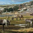 В продолжение темы стадий деградации дикой природы под антропогенным воздействием приведены данные о первой из них - плейстоценовом перепромысле. Оказывается, на всех континентах вымирание мегафауны обусловлено истреблением человеком, иногда вкупе с преобразованием ландшафтов огнём, а не климатом и другими естественными причинами. Также цитируется удивительно красивое доказательство перепромысла через анализ сегодняшней конкуренции овцебыка с северным оленем на изолированных арктических островах.