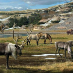 Плейстоценовый перепромысел: роль человека в массовых вымираниях мегафауны