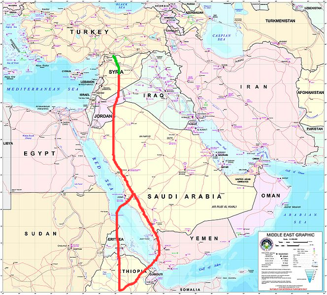 Сирийские птицы с передатчиками мигрируют в Йемен и возвращаются через Эрирею. Н этом пути птицы из Биречика навещали сирийскую колонию у Пальмиры