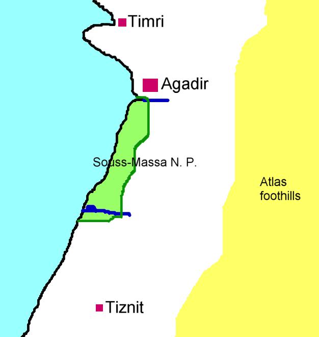 Современный ареал вида в Марокко