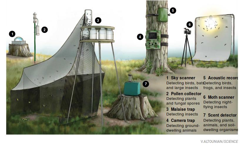 Ловушки, используемые для мониторинга в Крефельдском исследовании, следующая илл. - основные районы исследования