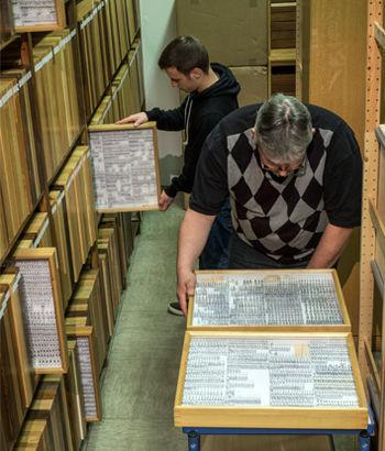 Коллекции Крефельдского энтомологического общества насчитывают миллионы экз.
