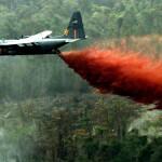 Химическая война: как США борются с наркотиками и врагами демократии