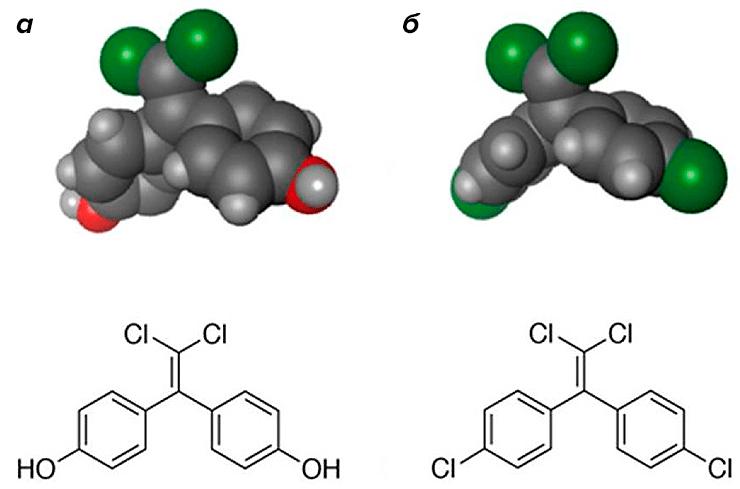 исунок 9. Атомная модель и химическая структура сходных по строению эндокринных разрушителей: бисфенола С (а) и ДДЭ (б) [28]