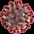 Последствия пандемии заболевания COVID-19, возбудителем которого является новый коронавирус SARS-CoV-2, уже затронули весь мир. Новостями о ней переполнены ленты всех новостных ресурсов, оттеснив на задний план остальные темы. Мы не новостной ресурс, и обычно мало пишем на «горящие» темы, но ситуация с COVID-19 является симптомом и одновременно...