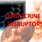 Обратная сторона прогресса: эндокринные разрушители