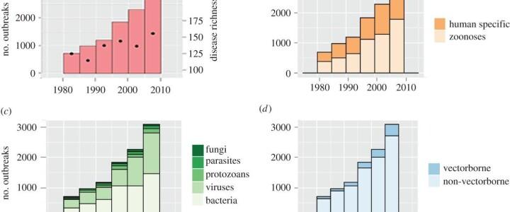 Истоки пандемии нового коронавируса принято видеть в контакте с заражёнными животными на рынке в Ухане. Но подобные рынки – далеко не единственное место, где носители опасных вирусов...