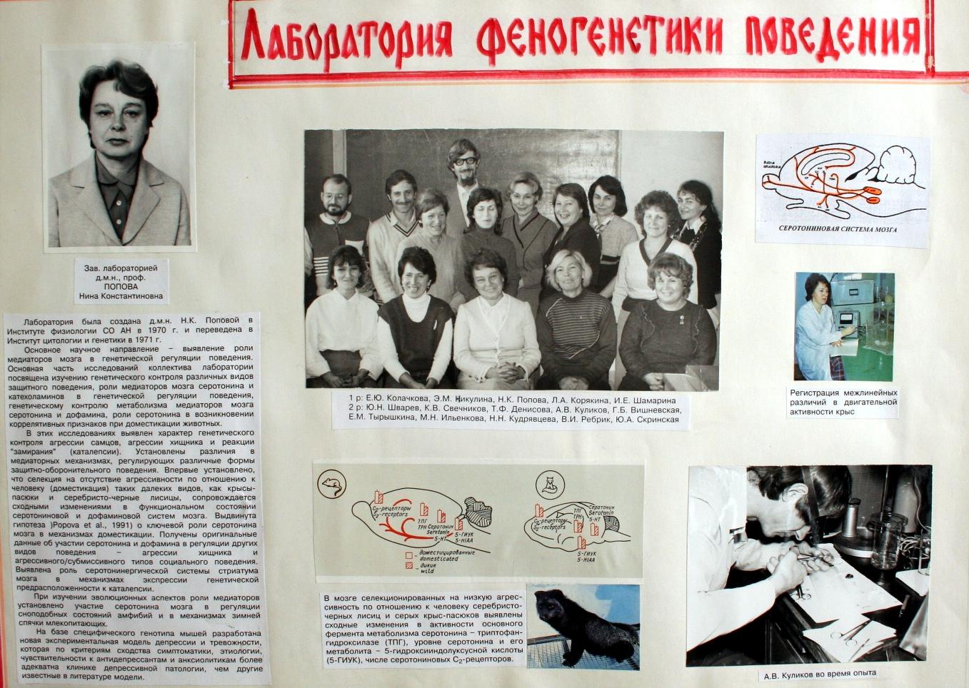 Фотоальбом к 40-летию ИЦиГ СО РАН