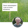 Сейчас огромные площади природных местообитаний в Москве уничтожены вместе со всеми их обитателями. В том числе на ООПТ - особо охраняемых природных территориях, предназначенных для сохранения биоразнообразия.