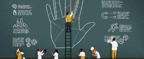 Пальцевый индекс некогда считался важным предиктором самых разных человеческих качеств; считалось, что их формирование определяется уровнями тестостерона и эстрогенов в...