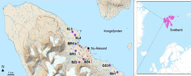 Слева. Места, где исследователи брали пробы почвы. В кластере SL3 они обнаружили больше всего ДНК с геном blaNDM-1